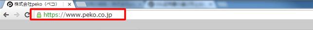 ドメイン認証型SSLサーバー証明書(DV: Domain Validation)